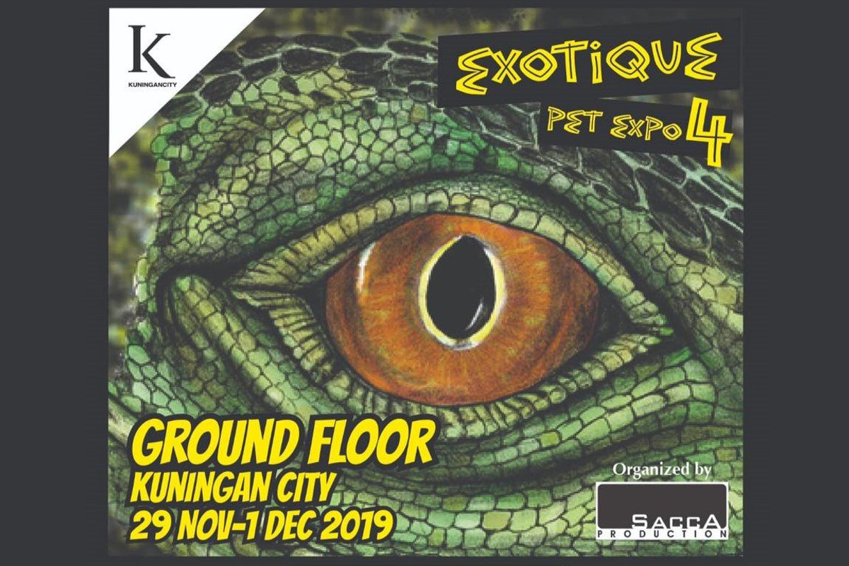 ExoTique Pet Expo 4